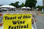 Wine_Festival_07262014a
